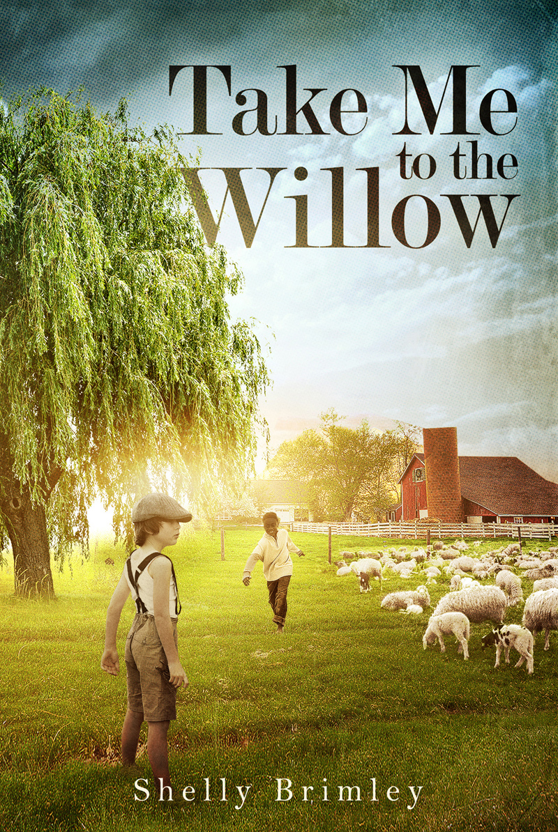 Take Me to the Willow…by Shelly Brimley-Blog Tour Review