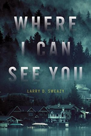 Where I Can See You…by Larry D. Sweazy