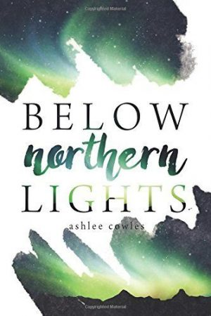 Below Northern Lights by Ashlee Cowles